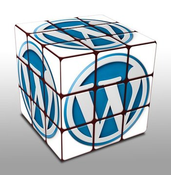 Wordpress website maken.